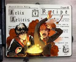 #7 Felix Felicis
