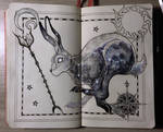 Hare constellation