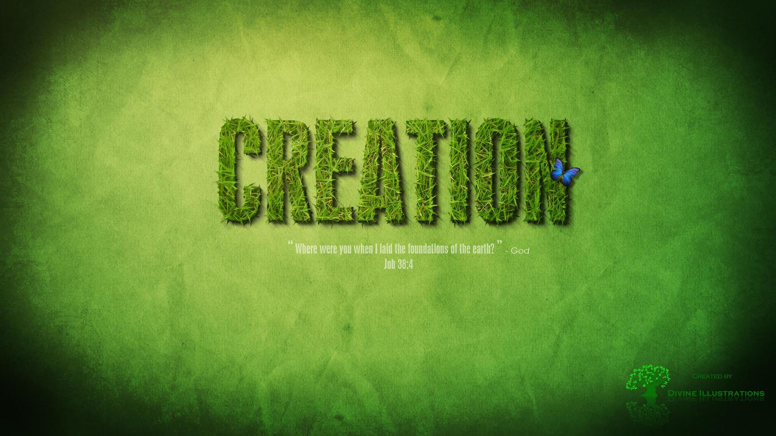 Creation by makorm
