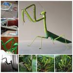 Mantis Sculpture