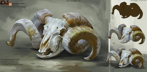 Free Tutorial_Skull Study by DongjunLu