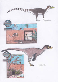 Dinosaur Zoo: Compies and the bird robber