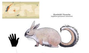 Nea  - Humboldt Viscacha
