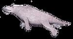 Sealwhale