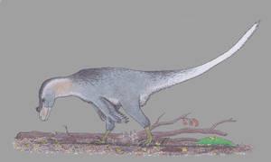 The omnivorous raptor