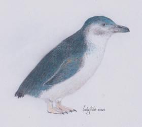 Day 29 - Penguin