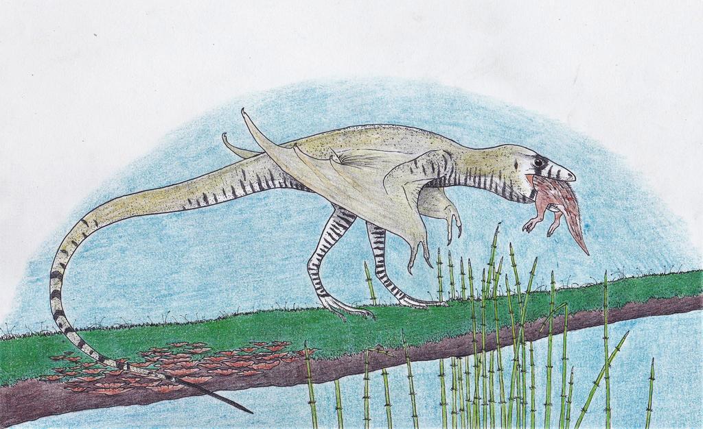 An early dragon