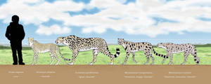 Feline Speedsters by Dontknowwhattodraw94