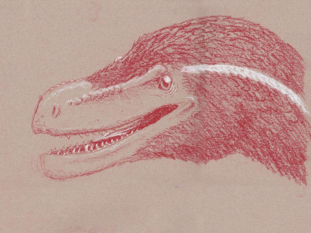 Conte raptor by Dontknowwhattodraw94