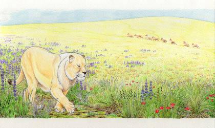 Beringian spring