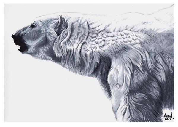 Bateman's polar bear profile. A fan art by Alvin-and-the-wild