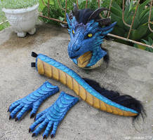 Dragon partial by zarathus
