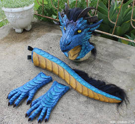 Dragon partial by zarathus