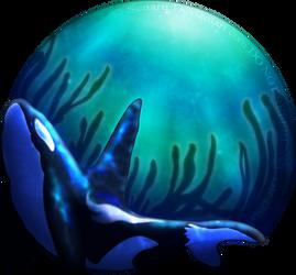 The Kelp Forest by Senaru