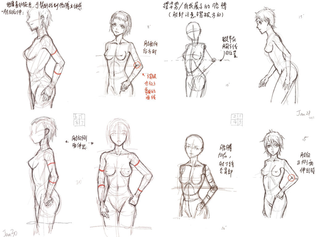 Uomo Ragno besides  also Life Cycle Of A Spider Coding Printable moreover Anime Figure Drawing 11 353037004 moreover Spider Identification. on sac spider