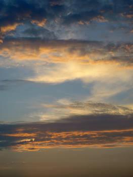 Daytona Sky