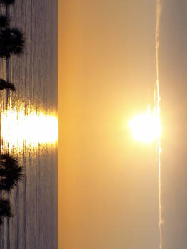 Daytona Sunrise 3