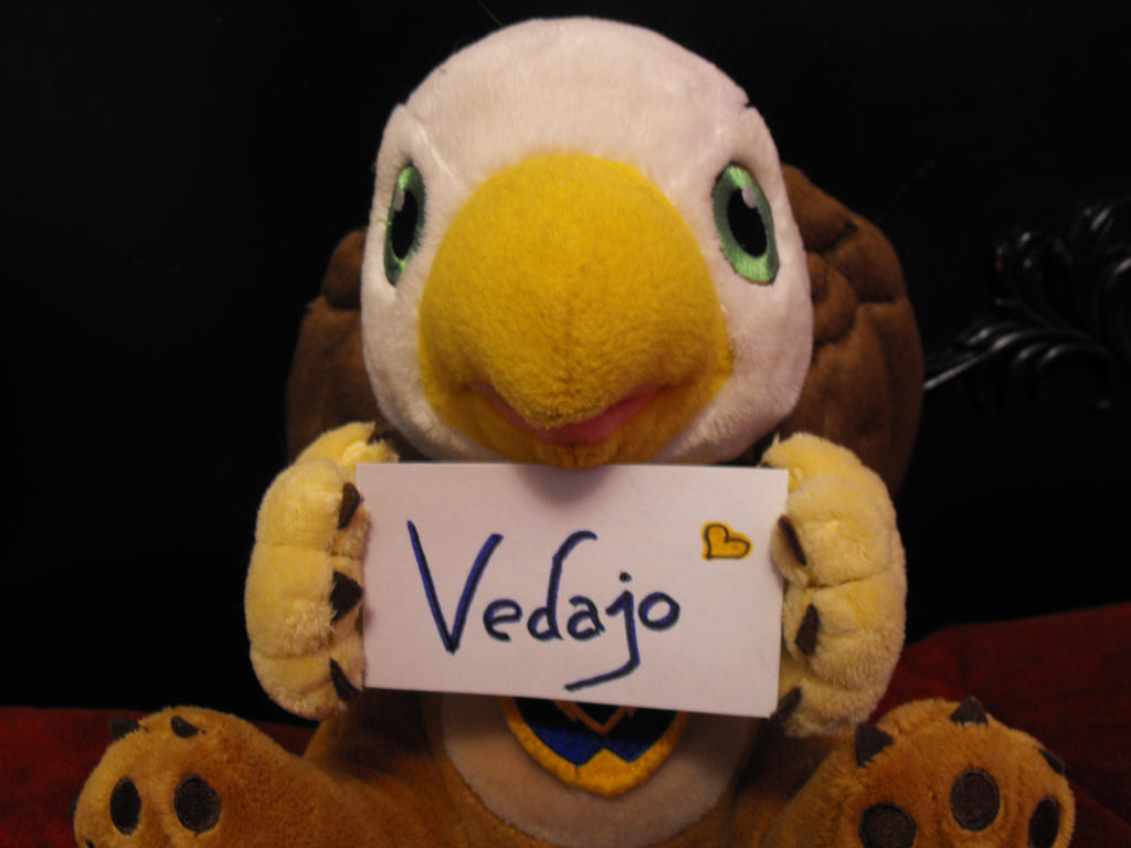 plushie fansign!  commission by Gravure-Bunny