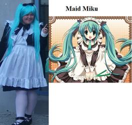 Maid Miku Cosplay Lulu