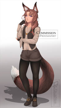 Oc Commission Levy