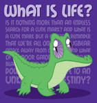 What is Life Shirt