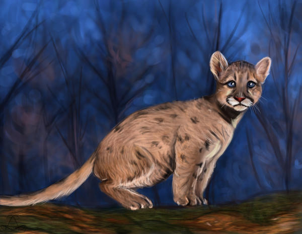 Baby Cougar Speedpainting by Leia1987 on deviantART