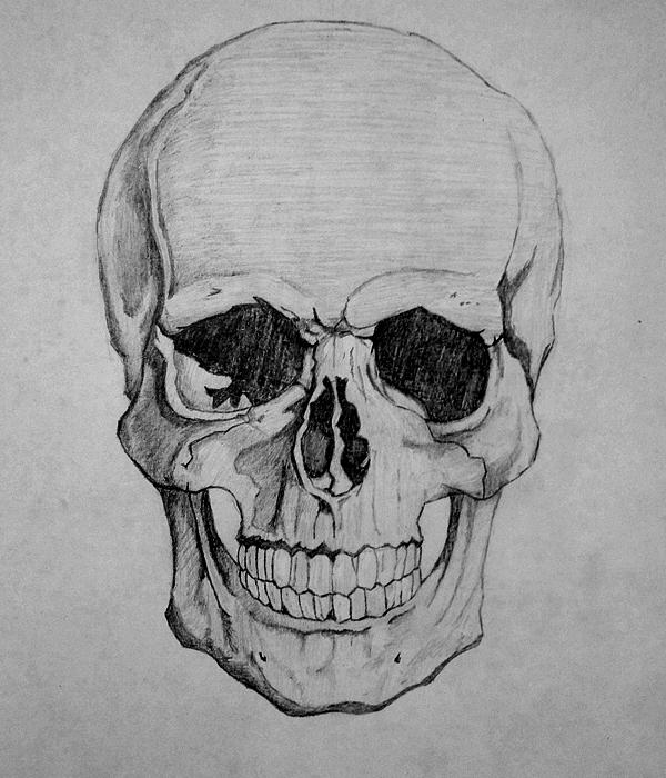 1000 Images About Sugar amp Skulls On Pinterest