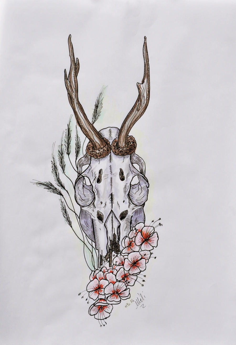 Roedeer skull - Tattoo Design (better quality) by MySweetDarkness