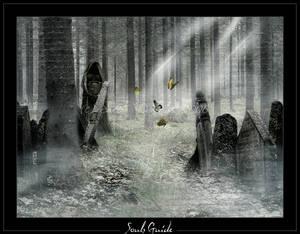 Souls guide