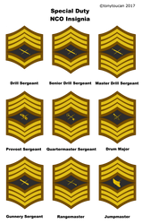 RRA: Special Duty NCOs