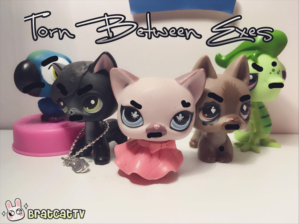 LPS NTM Cycle 1 Freestyle for JamieTheBunny by AwesomeJammerAJ