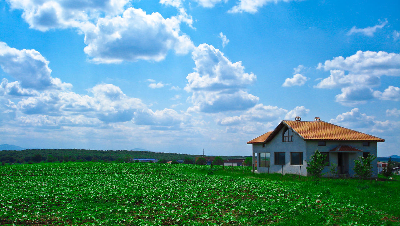 House in middle of the field