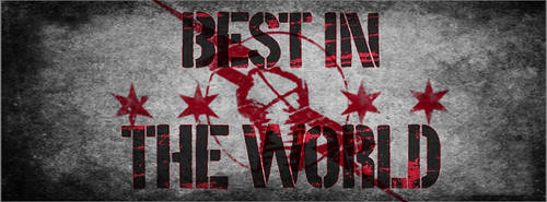 CM Punk Best In The World Photoshop Edit (2) by Jammy31