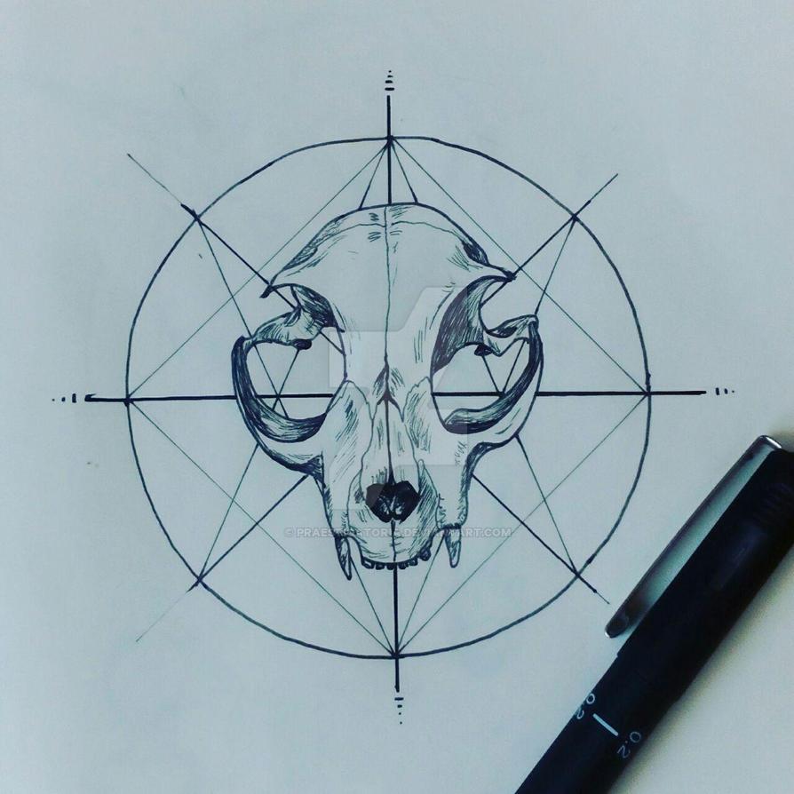 Skull. by Praestigatoria