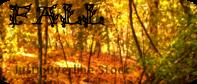 Seasons Buttons - Fall by EculyptusTree