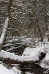 Natural bridge across a brook by Eternalfall1