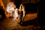 La ferratura del cavallo by OnTheWall
