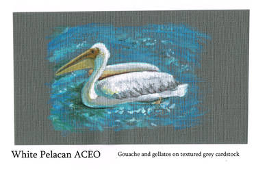 Pelican ACEO by Auronyth