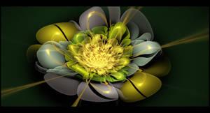 BloomingFractal1st