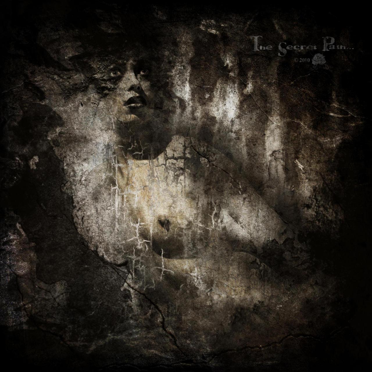 The Secret Path... by the-night-bird