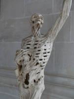 Skelpture 04... by the-night-bird
