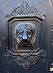 Door Handle 01...