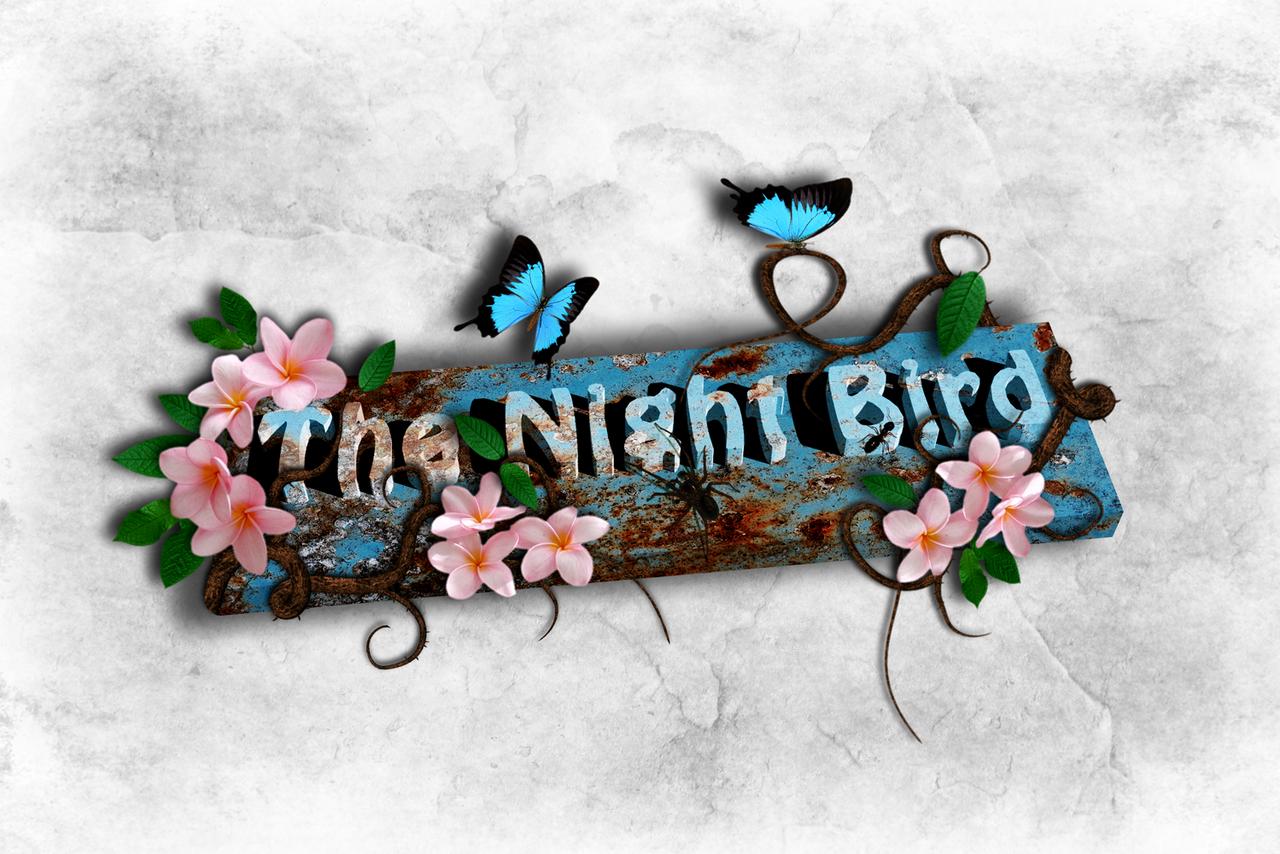 the-night-bird's Profile Picture