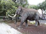 Mammoth 01