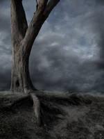 Dead Tree BG by the-night-bird