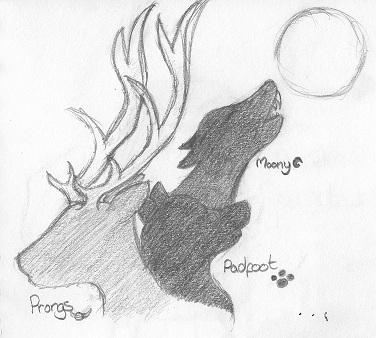 Padfoot