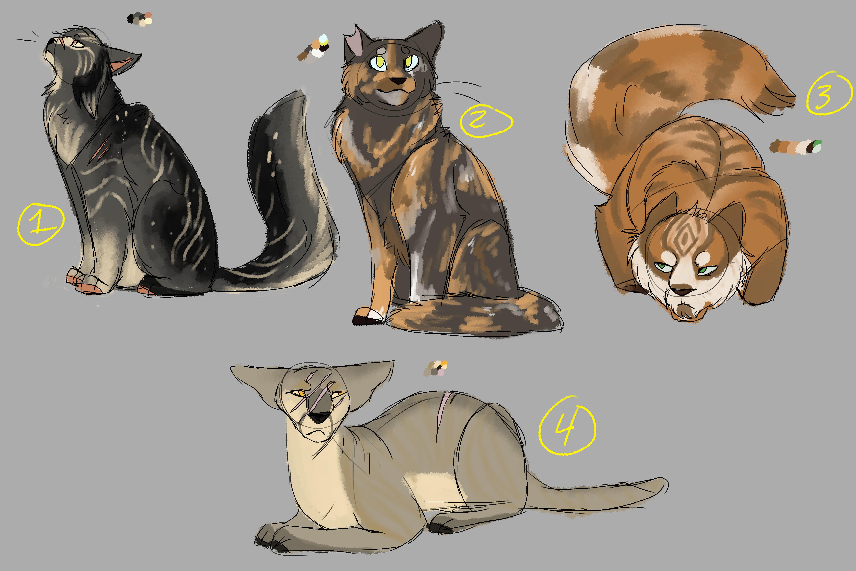 Adopt A Cat Steeles Bathurst