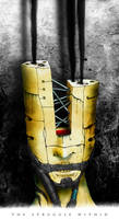 The Struggle Within - Haru+K1 by PabloMonforte