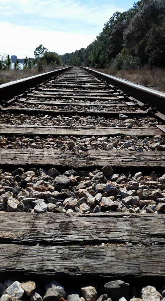 Tracks by GargoylesBlood