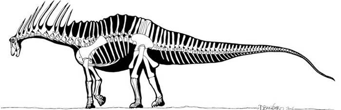 Amargasaurus by banchero